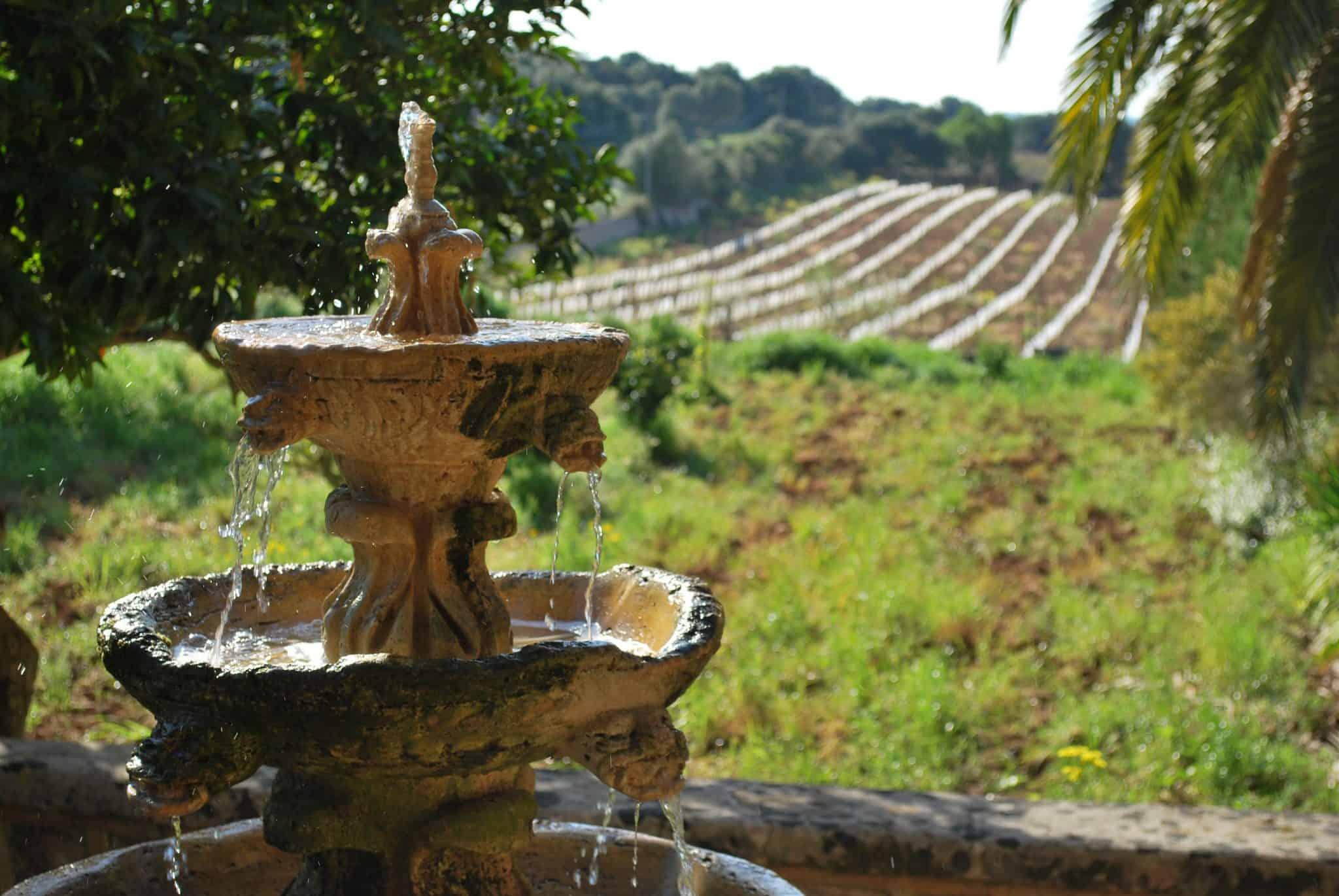 Weinfinca Hochzeit Mallorca